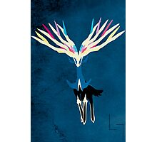 Xerneas Photographic Print