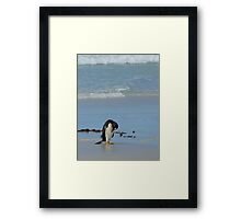 Oh Look... A Penny! Framed Print