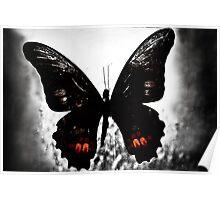 Mariposas tres #2 Poster