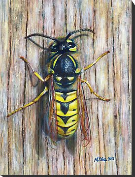 Wasp nature painting for sale