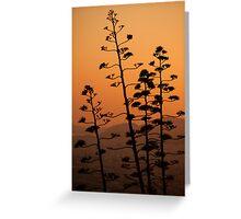 Mount Lycabettus Sunset Greeting Card