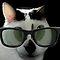 GoOfy CAts - The GoOfy HoUse