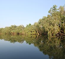 Reflections on the Daly River by Michelle Jonker