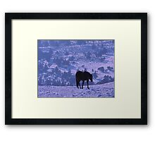 Horse Blues Framed Print