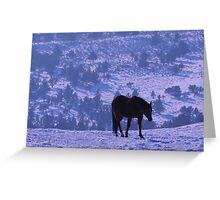 Horse Blues Greeting Card