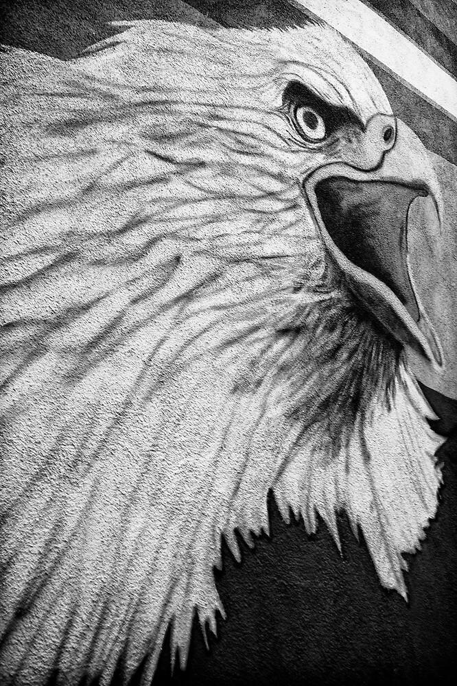 Angry Bird by Bob Larson