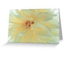 Silk Dress Greeting Card