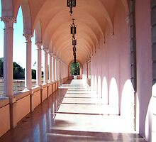 Ringling Museum of Art, Sarasota, Florida by Crystal Clyburn