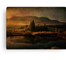 Scent of Pines Canvas Print