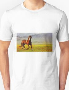 Freedom by Pierre Blanchard T-Shirt