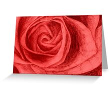 Rose sketch colour Greeting Card