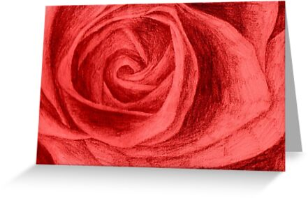 Rose sketch colour by ChrisNeal