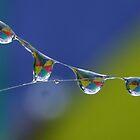 Kaleidoscope Raindrops by Gabrielle  Lees