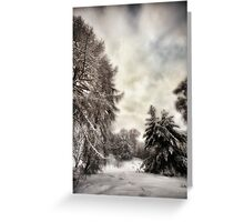 Snowy Woodland Walk Greeting Card
