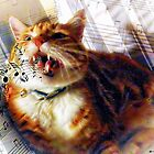 Leo Loves to Sing by Kristie Theobald