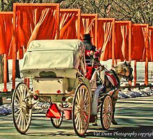Central Park Horse Drawn Carriage by Val Dunn