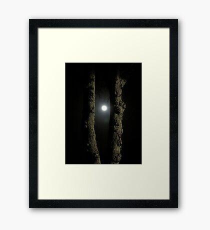 Moonlight: Framed Framed Print