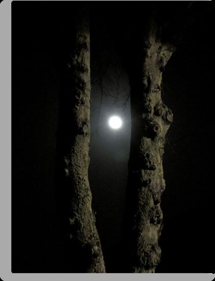 Moonlight: Framed by CreativeEm