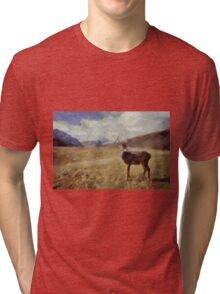 Lady of the Glen by Pierre Blanchard Tri-blend T-Shirt