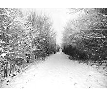 Snow. Photographic Print
