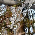 Winter Sculpture by globeboater