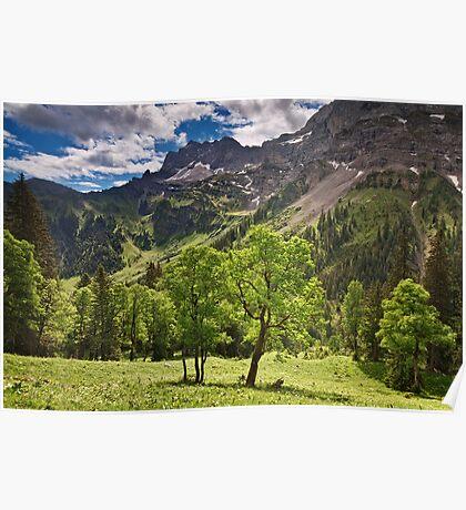 Alpine Light Poster