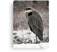 Fishing in the Snow Canvas Print