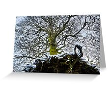 Tree with roots Greeting Card