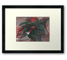 Veils Framed Print