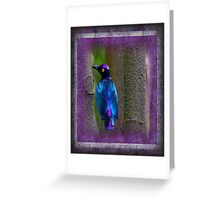 A beautiful Purple Glossy Starling Greeting Card