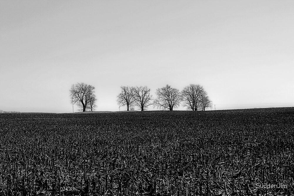 Horizon by SuddenJim