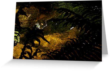 untitled #33 by Bronwen Hyde