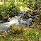 Saxhyttan complex [Skärvån river] by João Figueiredo