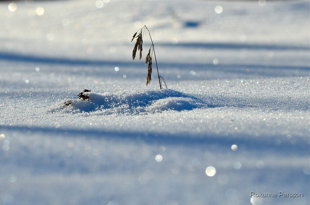 In a Field of Diamonds by Roxanne Persson
