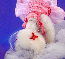 Shy Ballerina by starlitestudio