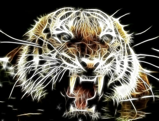 Tiger by Smudgers Art