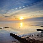 Severn Foreshore by Andrew Jeffries
