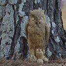 Ground Owl by rosaliemcm