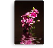 Carnations flood Canvas Print