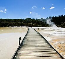 Crossing the Terrace, Wai-O-Tapu by Dilshara Hill