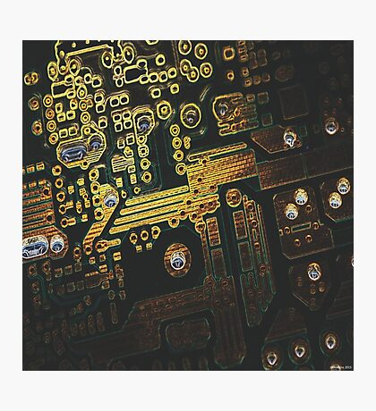 Bionic Photographic Print