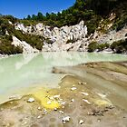 Acidic Lake, Wai-O-Tapu by Dilshara Hill
