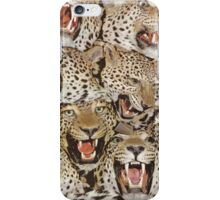 Cheetah Phone Case iPhone Case/Skin