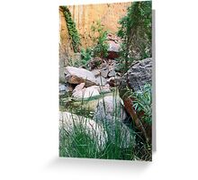 Still Water Zen Greeting Card