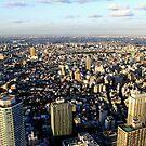 Japan Reloaded - Sunshine 60 by fenjay