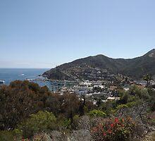 Avalon Harbor, Santa Catalina by seeingred13