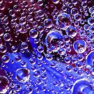 Water Droplets on a spiderweb by adng