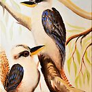 Kookaburra by Glen Johnson