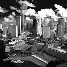 Sydney - BW by Deborah Clearwater