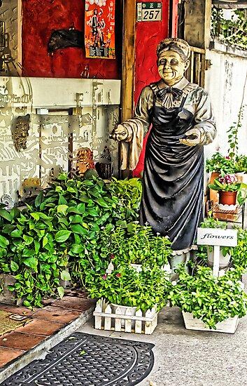 Flower Shop Granny by TonyCrehan